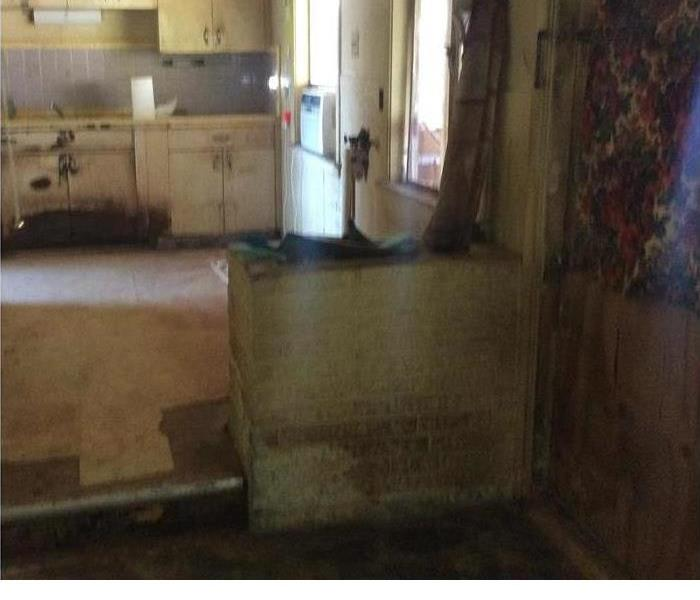 Kitchen Mold in San Antonio, TX Before