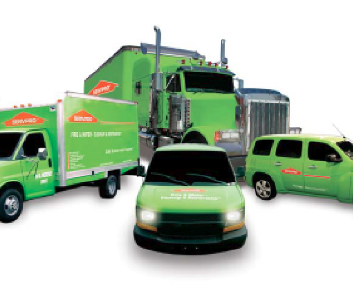 You Can Trust SERVPRO of Alamo Heights