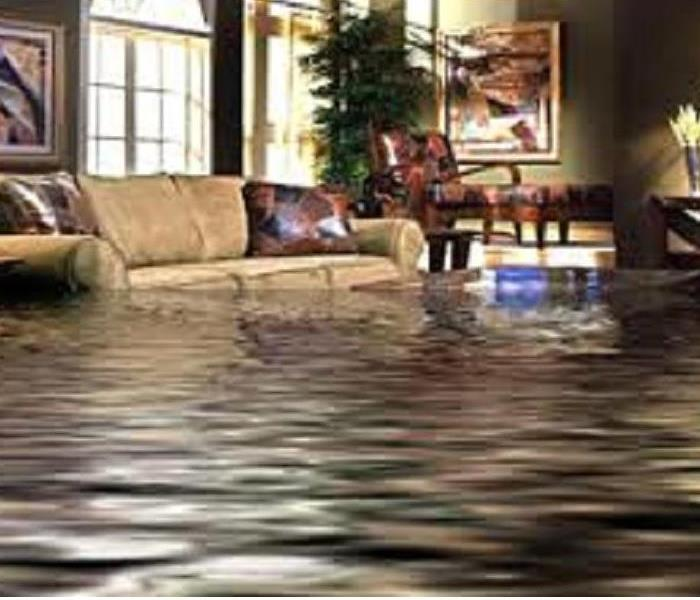 Flooded living room with water up to the brown couch level